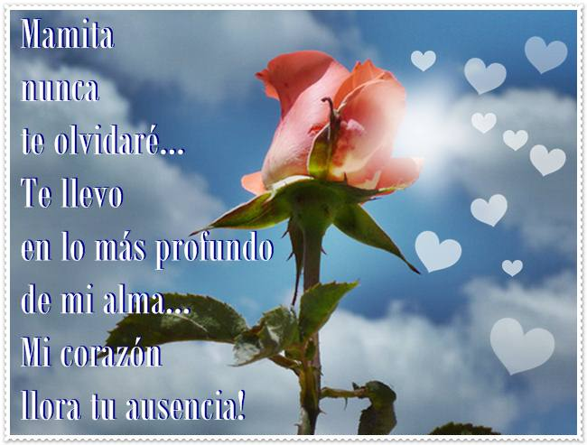 Imagen de corazón y una rosa con un mensaje para una madre en el cielo